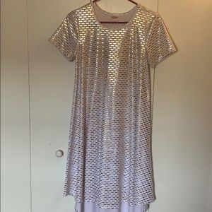 LAST CHANCE Metallic RARE Elegant Carly Dress